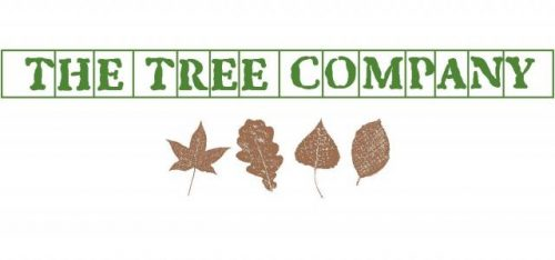 THE TREE COMPANY (TREE SURGEON)